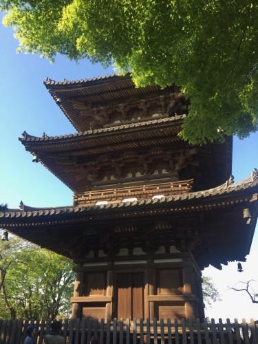 Sankeien Pagoda in Yokohama
