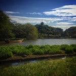Sankeien Garden: 10 Reasons To Love This Japanese Garden Near Tokyo