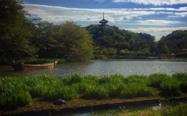 Beautiful Views at Sankeien Gardens