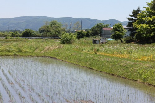 The View Outside the Entrance of Jorakuen Japanese garden, Fukushima, Japan.