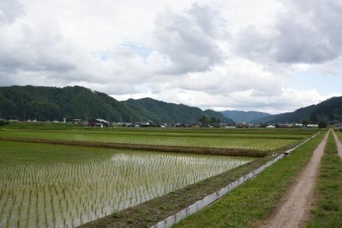 Discover the Japanese Countryside, Satoyama