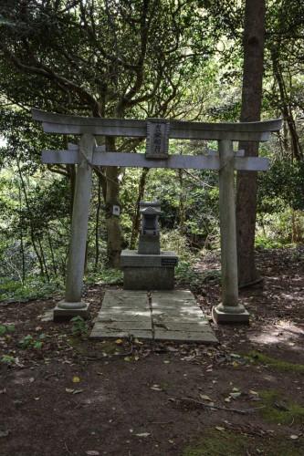 Torii Gates at Hakogata Hachimangu Shrine