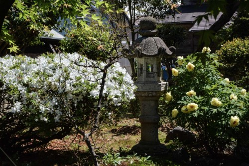 Kokonoen Tea Shop Garden