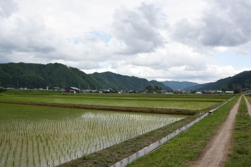 Discover the Japanese Countryside, Satoyama