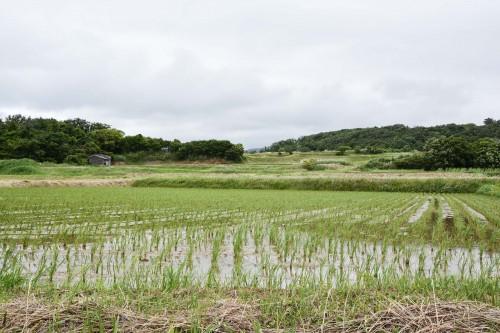 A view from Minshuku Takimoto on Sado island, Niigata, Japan