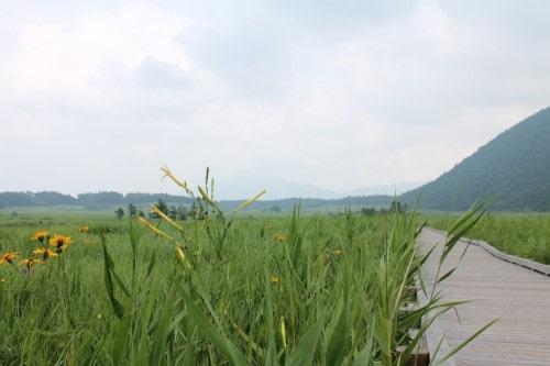 Tadehara marshland at Aso Kuju national park in Rita prefecture, Kyushu, Japan.