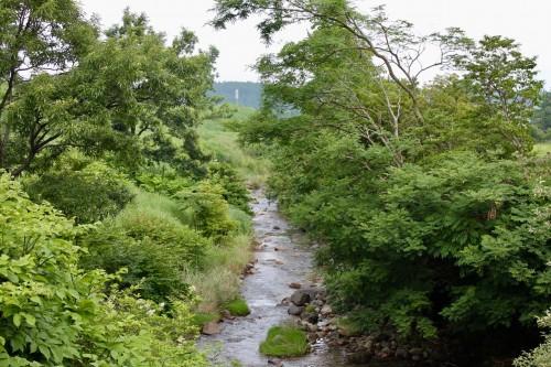 Tadehara marshland at Aso Kuju national park in Rita prefecture, Kyushu, Japan