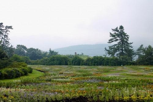 Kugu Flower Park in Oita prefecture, Kyushu, Japan.