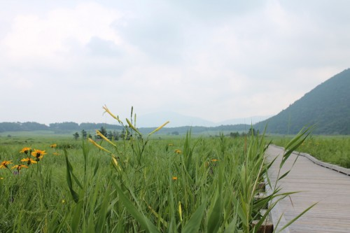 Tadehara marshland at Aso Kuju national park in Rita prefecture, Kyushu, Japan.