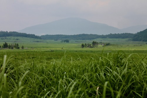 Tadehara marshland at Aso Kuju national park in Rita prefecture, Kyushu, Japan