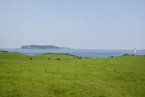 the Suginohara Farm faces the Genkai sea in Karatsu city.