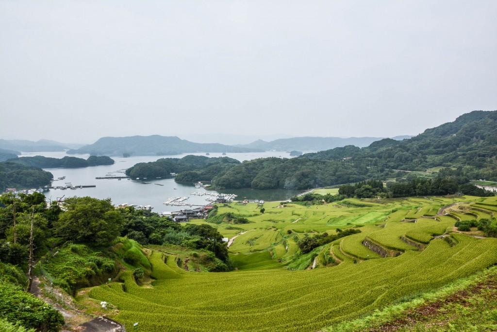 voyapon-saga-rizieres-kyushu