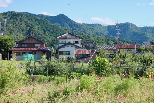 The village, Fukui prefecture