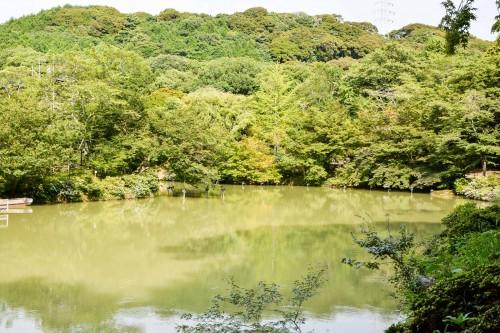 Mifuneyama rakuen garden at Takeo onsen area, Saga.