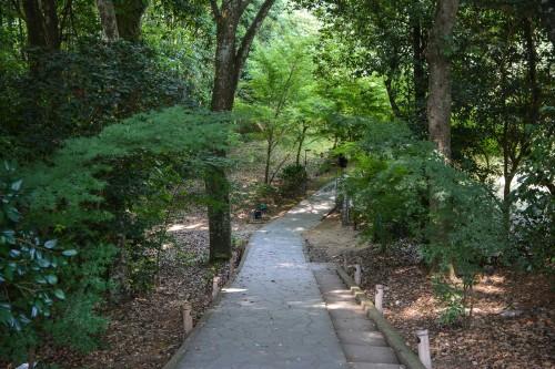 the path to reach the holy Camphor Tree, Ohkusu at Takeo onsen, Saga prefecture, Kyushu.