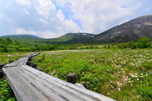 Jododaira marshland in Fukushima