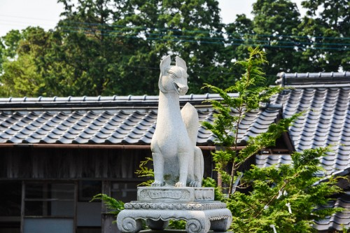The inari statue of Kagamiyama shrine, Karatsu, Japan.