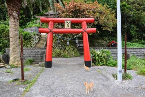 The shrine at Cat island Fukashima, Oita prefecture, Kyushu.