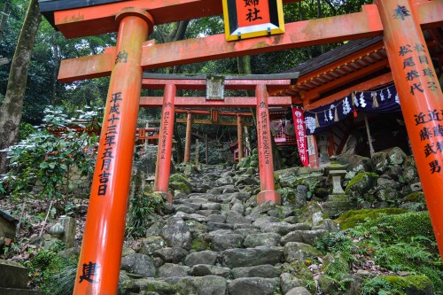 The pass under the red torii, Yutoku inari shrine, Saga, Kyushu.