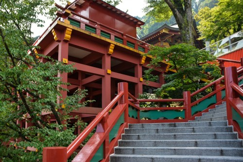 To reach the main shrine of Yutoku inari shrine, you have to climb some steps!