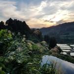 Yamakoshi Village: Vivid Culture and Rural Respite in the Heart of Niigata Prefecture