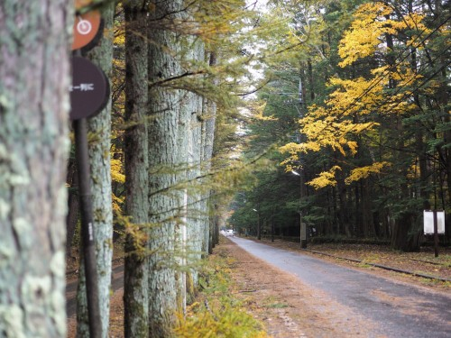 Karuizawa Cycling in the mountain resort, only one hour from Tokyo by Shinkansen.