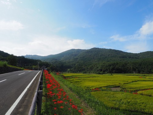 The rural scenery in Bungotakata, Oita, Kyushu