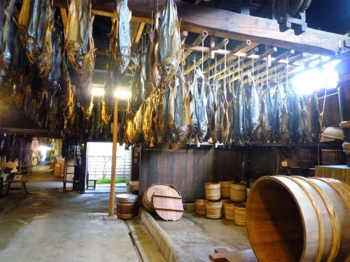 Murakami salmon hung up to air-dry in a room.