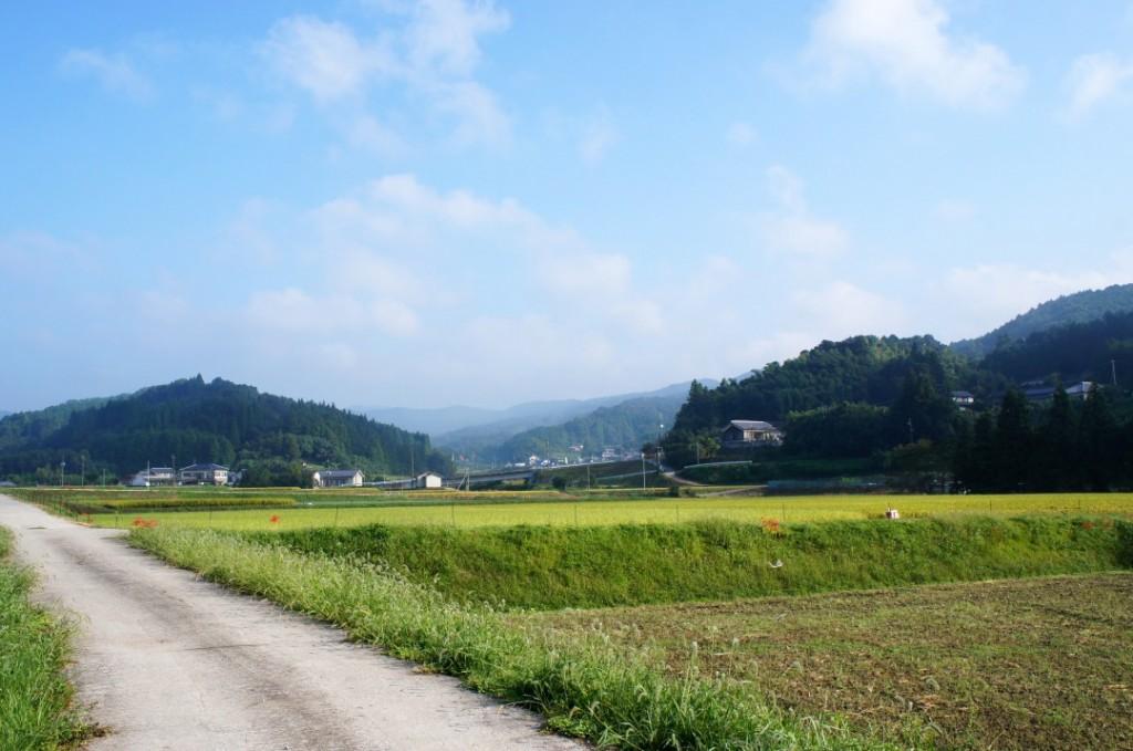 Countryside life in Oita, Kyushu, Japan.