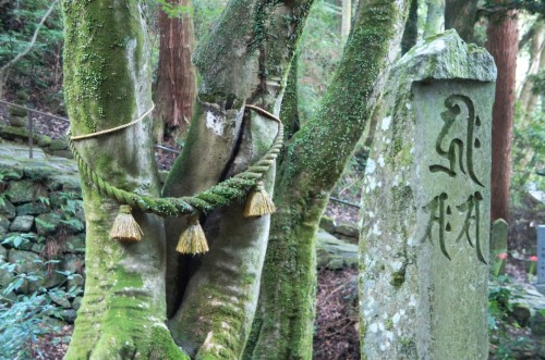 Shintoism and Buddhism Syncretism in Kunisaki, Oita, Kyushu, Japan.