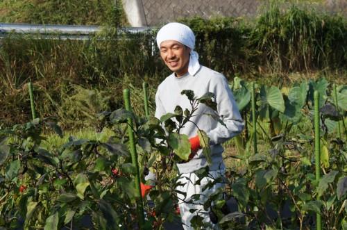 Farmer's stay on Kunisaki peninsula, Oita, Kyushu, Japan