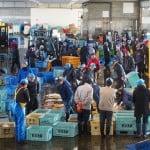Himi: a Small Fishing Port in Toyama Bay