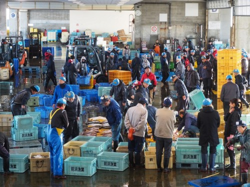 Himi fishing market