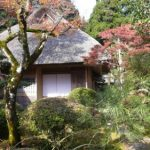 Discover Japanese Garden in Autumn at Kunenan