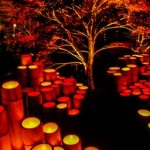 Ogi's Lantern Festival in Full of Autumn Colors!