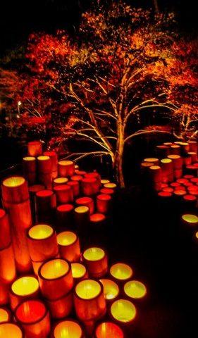 Ogi lantern festival