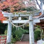 Admire the Colors of Autumn at Daikozenji Temple