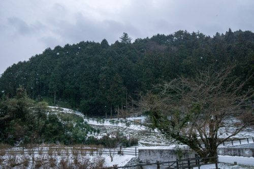 Shiraino Waterfall, the ice cascade in winter, Toon City, Ehime Prefecture.