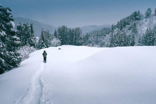 Winter Snowshoe Trekking in Takane Village in Niigata Prefecture