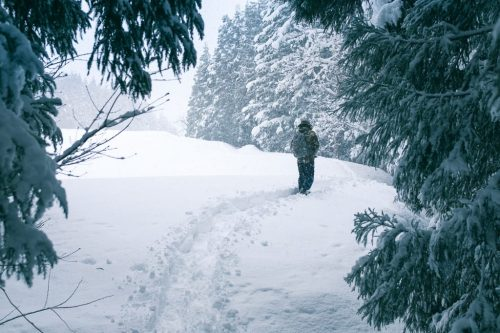 Takane Village Outdoor Snowshoe Experience in Niigata Prefecture