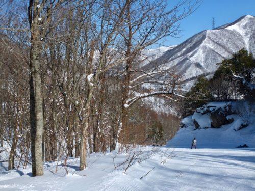 Skiing at Naeba, One of Japan's Top Ski Resorts, Niigata, Powder snow, Japan.