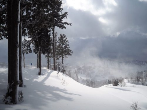 Ski and Snow-shoe experiences in Yamakoshi at Koshi Kogen