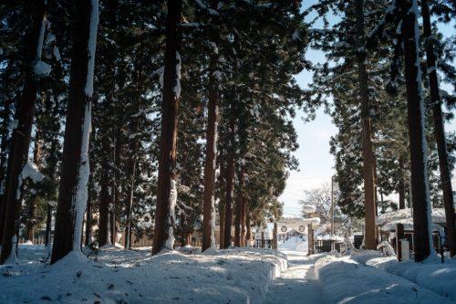 Uesugi Samurai Mausoleum Cedars in Winter Snow Yonezawa City