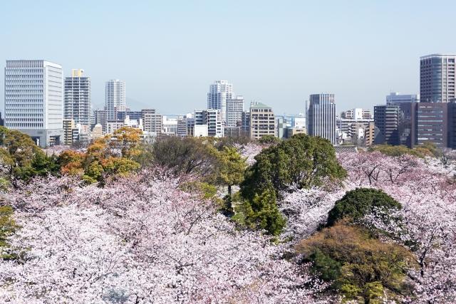 Fukuoka Castle Park