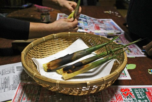 Bamboo Forest Takenoko Shoots Kagoshima Prefecture Local Cuisine Kyushu Japan