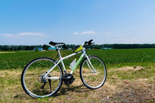 Koshimizu Cycling Guided Bike Tour Northern Hokkaido Nature Outdoors