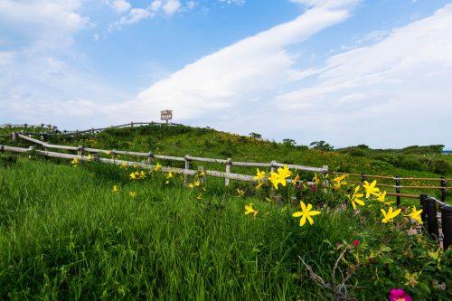 Koshimizu-cho Koshimizu Genseikaen Flower Garden Nature Northern Hokkaido Prefecture Lake Tofutsu