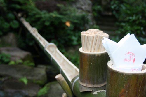 Niigata City Furumachi Geigis Geisha Performance Ikinariya Ryotei Dining Traditional Cultural Heritage taki soumen bamboo noodles