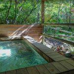 Stay in Nakatsugawa: Japanese-Style Ryokan or Western-Style Hotel