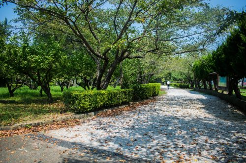Castle Park in Usuki, Oita Prefecture, Japan